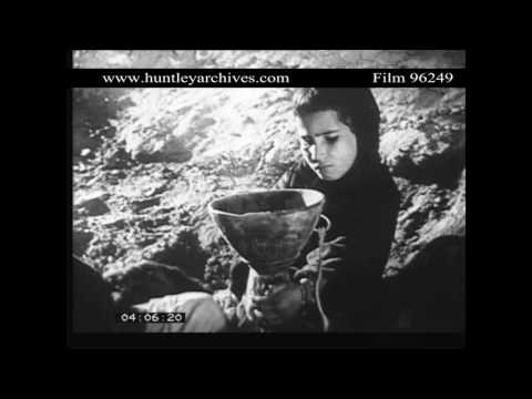 Women collect Water in the Sahara.  Archive film 96249