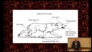 Stanley Coren - Animal Communication: How To Speak Dog