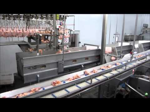 Cut Up And Deboning System 6000 BPH Rev 0