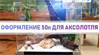 Оформление аквариума для аксолотля на 50л