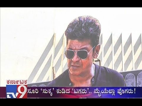 Tagaru Movie Review: Shivanna, Dolly & Chitte Steals The Show