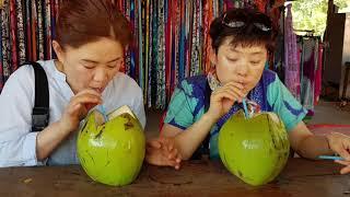 다도라투어 (캄보디아 자유여행)