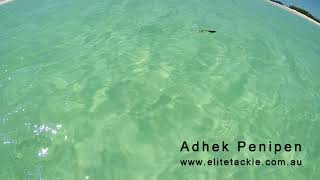 Elite Tackle Adhek Penipen Stickbait