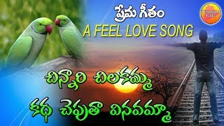 Chinnari Chilakamma Song   Super Hit Love Feel Songs   Telugu Love Songs   Private Love Songs Telugu