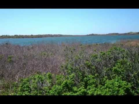 "Block Island, featuring the music of Eric Whitacre. ""The River Cam (with Julian Lloyd Webber)"""