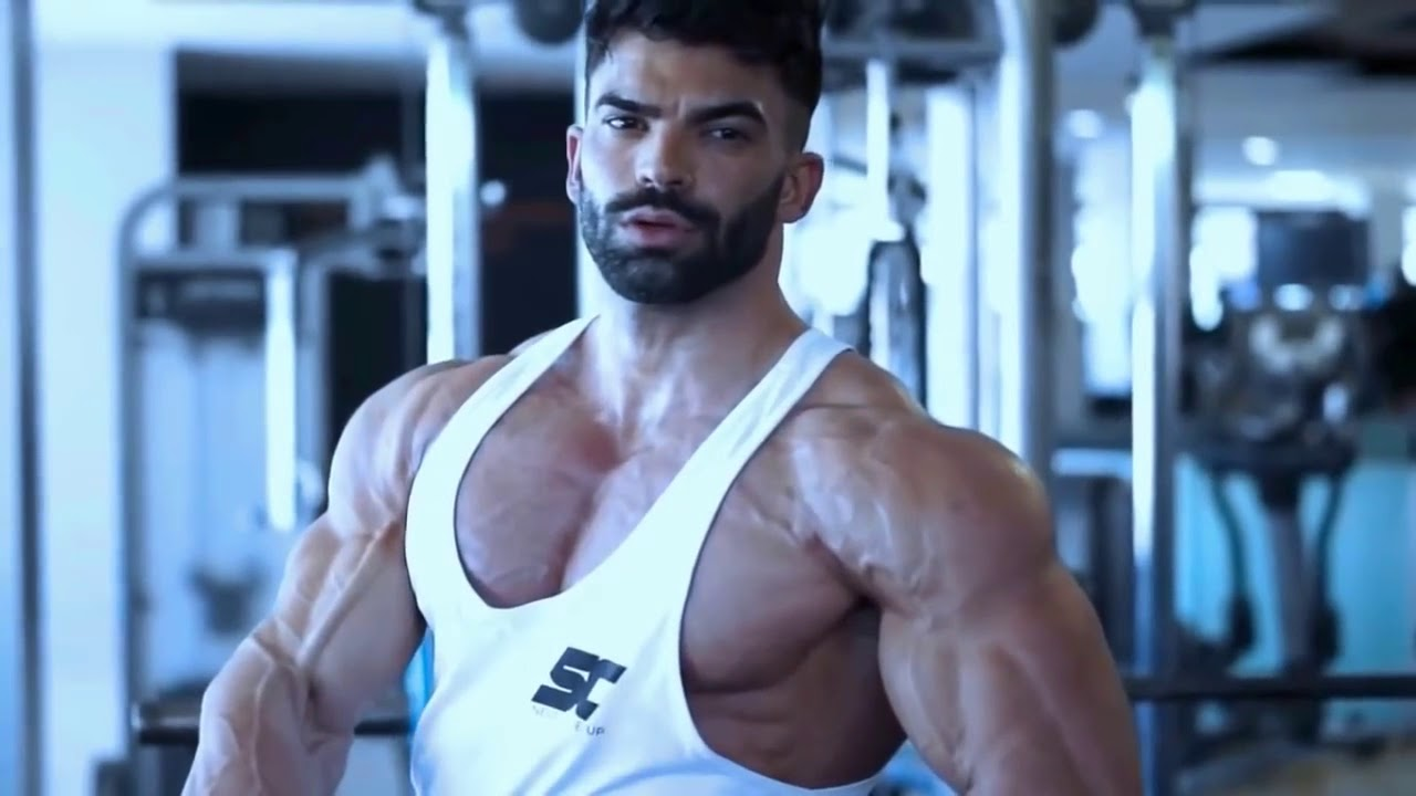Sergi Constance How Workout Chest Triceps 2017 HD NEW