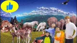 Superhero Kids Go To School Learn Colors Grapes Fruit & Animals Finger FamilySongs For Child  # 499