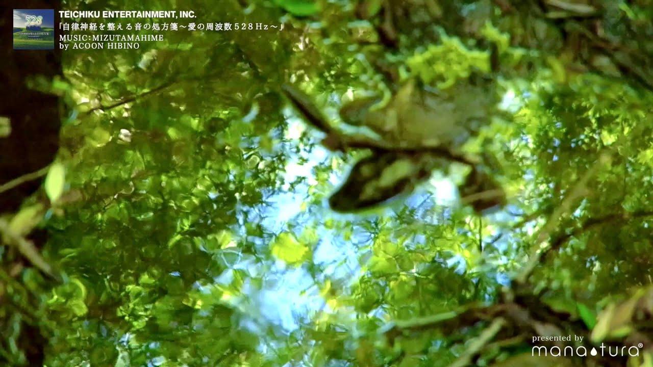 ACOON HIBINO / MIZUTAMAHIME 「...