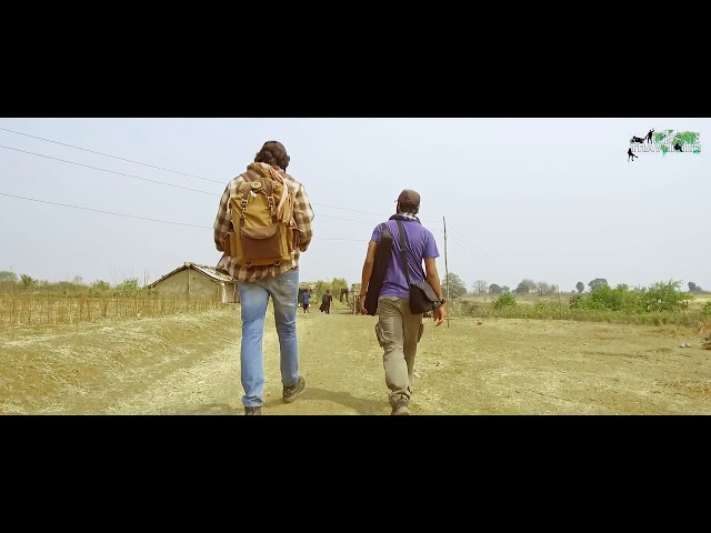 In search of Stories - Insane Travellers in Madhya Pradesh   Travel Vlog   Travel India