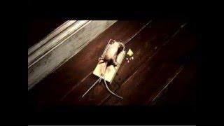 老鼠被補鼠器夾到... 很...血腥的..... thumbnail
