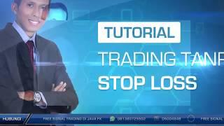 Teknik Trading Forex & Gold Tanpa Stop Loss