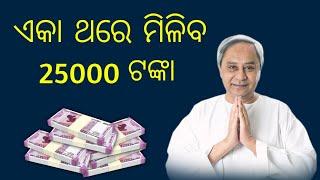 କାଳିଆ ଯୋଜନାରେ 5000 ଫେରାନ୍ତୁ  Return 5000 On Kalia Yojana  By Odia Simple