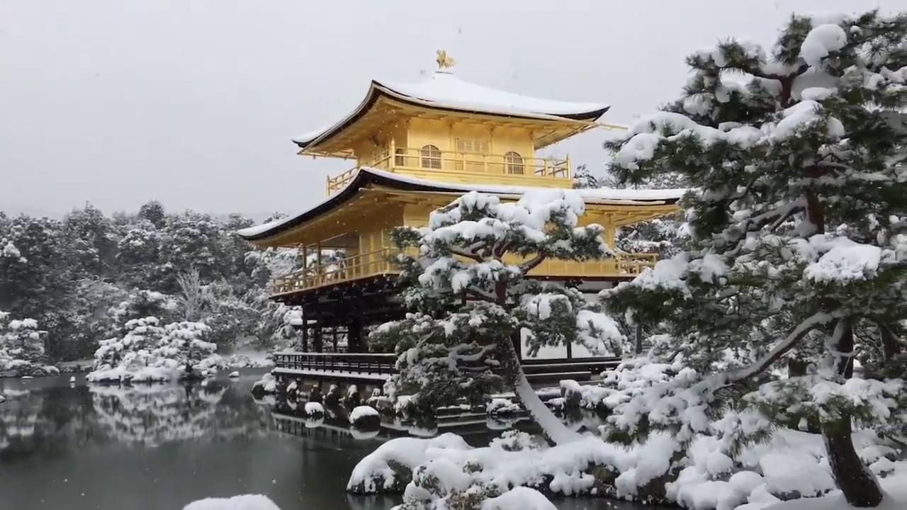 snow in kyoto kinkakuji golden pavilion covered with. Black Bedroom Furniture Sets. Home Design Ideas