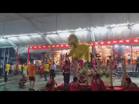 Singapore Nan Shao Lin Lion Dance On High Pole performances at 龙山岩 Temple on Day 15 of CNY 2/3/18
