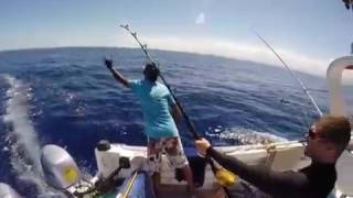 Landed blue marlin with fishing master le morne mauritius