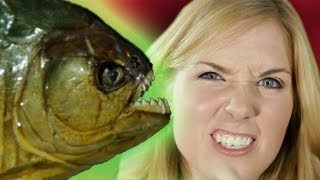 How long would a Piranha take to turn me into a skeleton? | Zoo La La (Ep 9) | Earth Unplugged