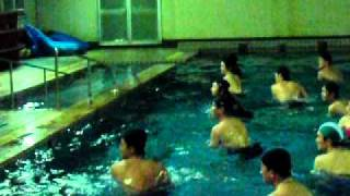 STEC(下野運動療法勉強会)が主催する運動を紹介。 今回は、2011/1...