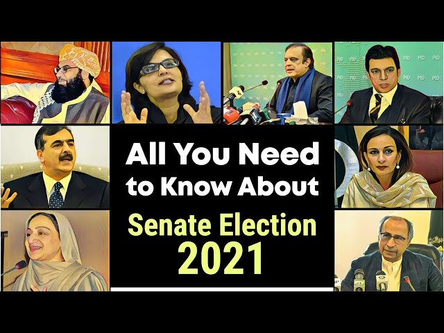 All You Need To Know About Senate Election 2021