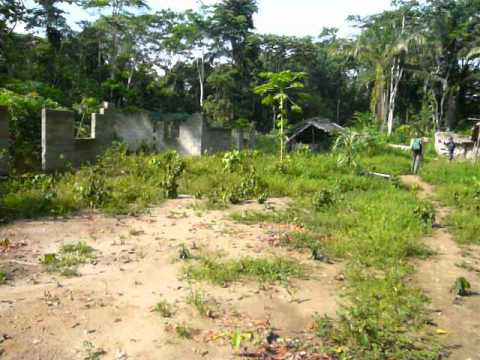 Patrol Post under Delayed Construction, Salonga National Park, DR Congo