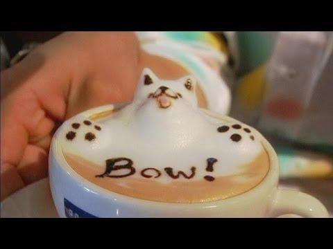 How To Make Cappuccino Foam Cat