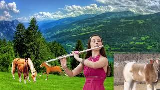 Волшебные звуки Свирели