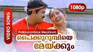 Paikurumbiye Meykkum HD 1080p | Vidyasagar - Gireesh Puthenchery | Dileep, Navya Nair | Gramaphone