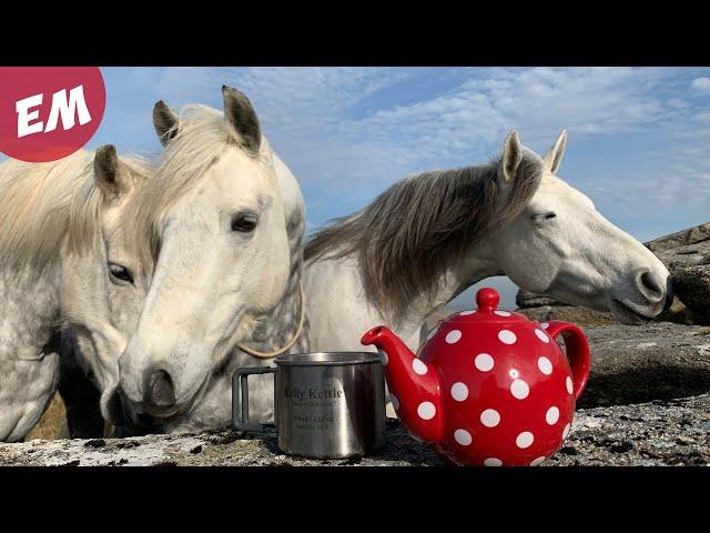 Equestrian Adventure Ready - My Summer Kit list!