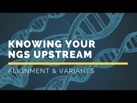 Knowing your NGS Upstream: Alignment and Variants