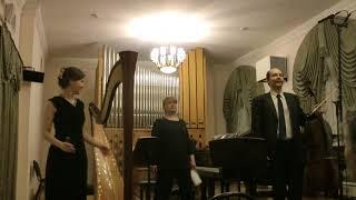 «Поэтические миниатюры» и «Скандинавский концерт» Дарья Славникова