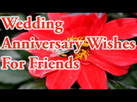 Wedding anniversary greetings to a friend