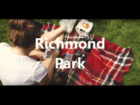 Richmond Park Deer, London