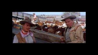 Tote brauchen keine Dollars 1975 Western, ganzer Film auf Deutsch