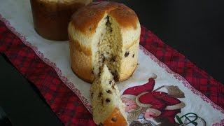Chocolate Panettone / Chocottone / 巧克力圣诞面包