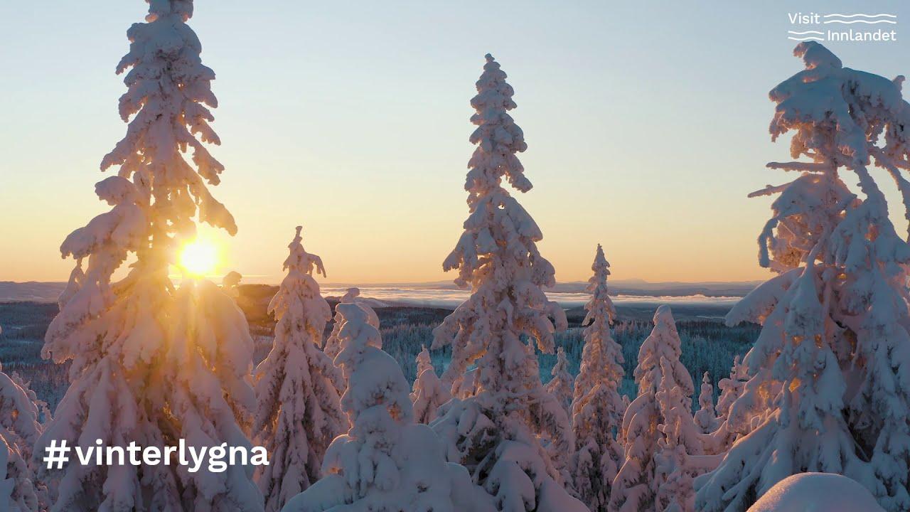 Vinter på Lygna