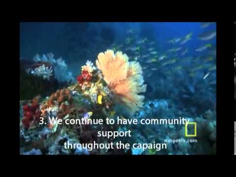 GREAT BARRIER REEF CAMPAIGN VIDEO