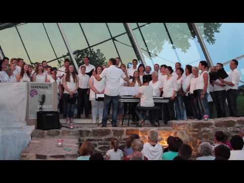 Projektchor Cäcilia Dalkingen  Serenade Limestor 2017