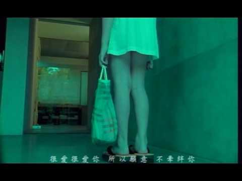 刘若英-很爱很爱你(China pop Music)