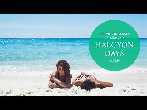 We Are Handsome - The Making Of Halcyon Days, 2015