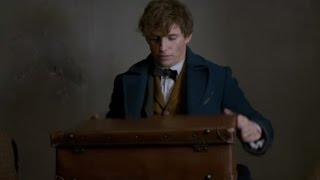 Fantastic Beasts and Where to Find Them  2016 movie trailers HD