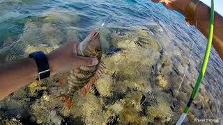 Рыбалка в Хургаде с берега. Часть 1 / Rock fishing in Hurgada from the coast. Part 1 HD