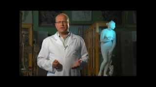 эпикриз-заключение врача в истории болезни