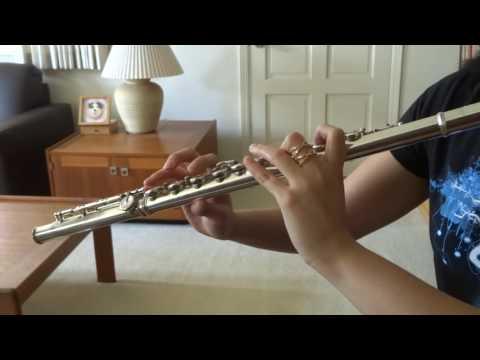 Houki Boshi - Bleach [flute cover]