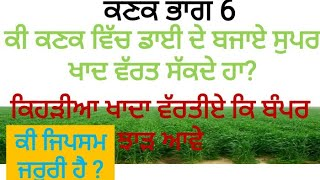 Fertilizers management in Wheat, ਕਣਕ ਵਿੱਚ ਕਿਹੜੀਅਾ ਖਾਦਾ ਵੱਰਤੀਏ, Wheat Part 6 by Sher Gill Markhai
