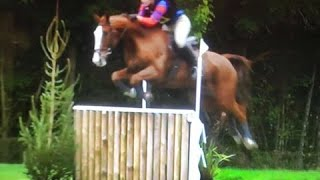 Pop at South of England BE Novice - 4th with 34.5 double clear!