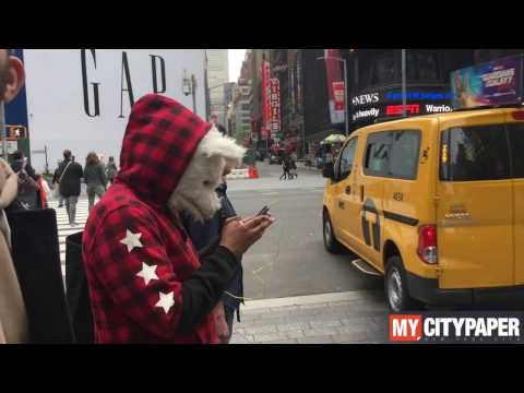Wolf of NYC