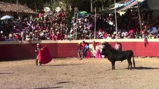 CORRIDA DE TOROS DE CANGALLO Y RANCHA 2014- Ayacucho [COGIDAS]