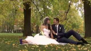 Осенняя прогулка.Свадебное видео.
