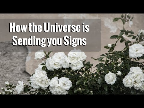 How & Why the Universe is Sending You Signs