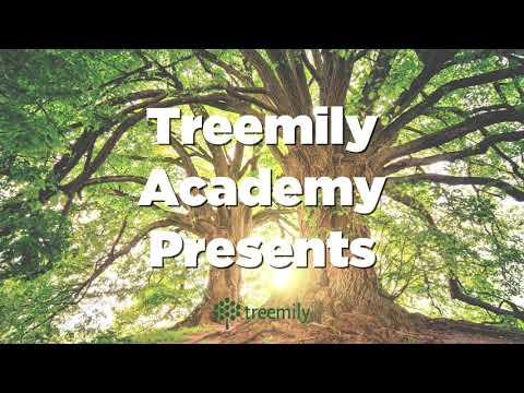 Treemily Ancestor Family Tree