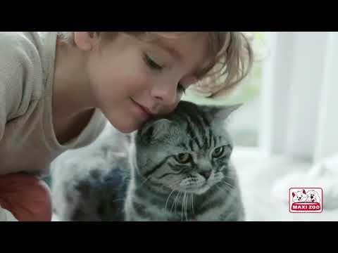 Vidéo Showreel 2018 - Version longue - Isabelle ANDRADE Comédienne Voix-Off